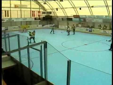 Szombathelyi Pingvinek az Osztrák Inline-Skaterhockey landesligában