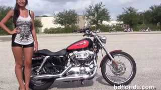 3. Used 2008 Harley Davidson Sportster 1200 Custom for sale in Riverview fl