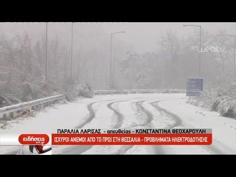 Χιονίζει στα ορεινά της Θεσσαλίας | 23/02/2019 | ΕΡΤ