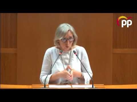 Cortés reclama mayor previsión y planificación para el próximo curso escolar