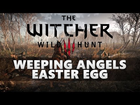 Amazing Doctor Who Easter Egg in The Witcher 3