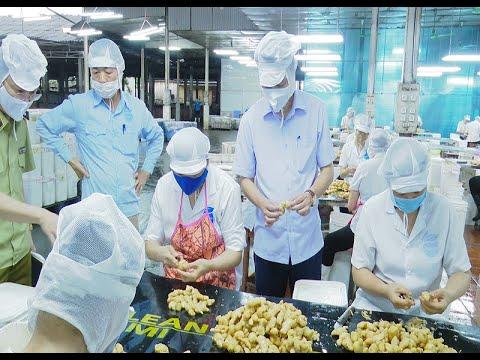 Nâng cao hiệu quả xúc tiến thương mại, bảo đảm thực phẩm nông sản an toàn tới người tiêu dùng
