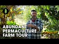 Download Lagu Beautiful 1-Acre Small Scale Permaculture Farm - Limestone Permaculture Farm Mp3 Free