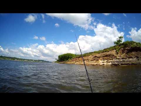 вобля река рыбалка