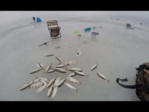 ловля рыбы на вымя
