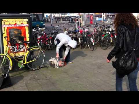 gestolen - Amsterdam: Fiets gestolen van meisje op klaarlichte dag tegenover Amsterdam centraal station met MEGA slijptol.