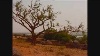 Niger Music And Images