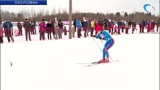 В Новгородской области прошла массовая гонка «Лыжня России»