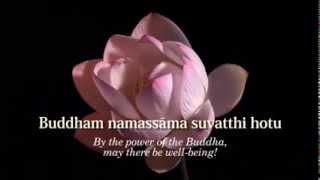 Video Ratana Sutta - The Jewel Discourse - Animated Subtitles & Translations HD 720p MP3, 3GP, MP4, WEBM, AVI, FLV Januari 2019