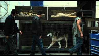 Watch Contraband (2012) Online