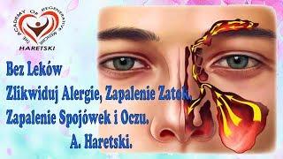 Bez Leków Zlikwiduj Alergie, Zapalenie Zatok, Zapalenie Spojówek i Oczu. A. Haretski.