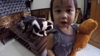 Video HARI PERTAMA masuk kesekolah Lifia Niala + Goyang BALITA LUCU Elsa MP3, 3GP, MP4, WEBM, AVI, FLV Juli 2017