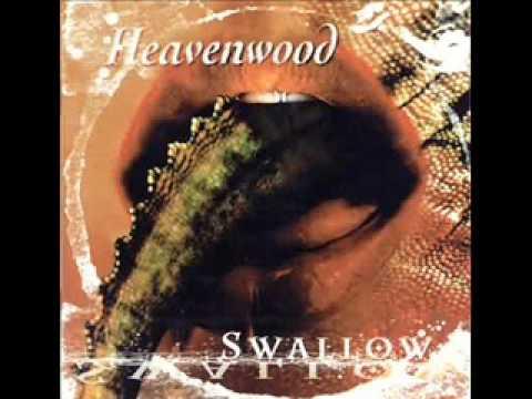 Tekst piosenki Heavenwood - Rain of July po polsku