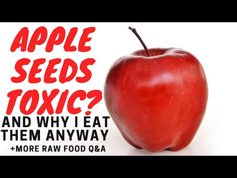 Are Apple Seeds Toxic?  Why I Eat Them Anyway + More Raw Food Q&A