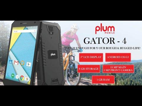 plum gator 4