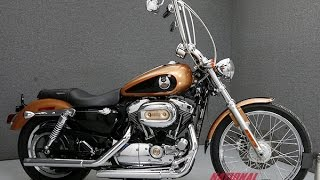 4. 2008 HARLEY DAVIDSON XL1200C SPORTSTER 1200 105TH ANNIVERSARY  - National Powersports Distributors