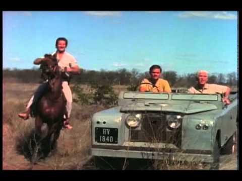 Mutual Of Omaha's Wild Kingdom - M'Bogo Safari