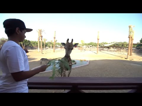 The Richest Kid Of Dubai With A Private Zoo