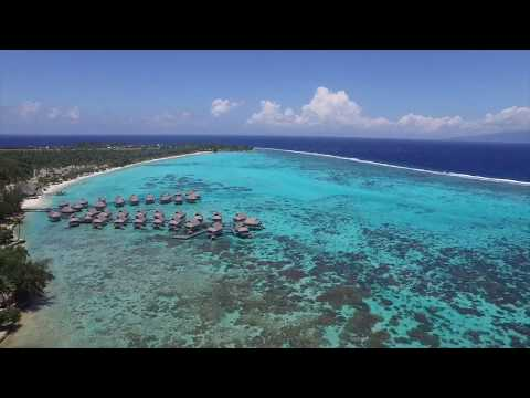 sofitel-moorea-ia-ora-beach-resort