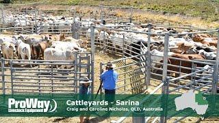 Sarina Australia  city photo : ProWay Cattleyards Sarina QLD Australia