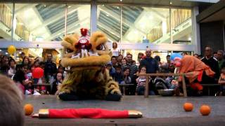 Nonton Lion Dance 2 - Point Cook Film Subtitle Indonesia Streaming Movie Download