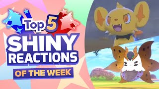 TOP 5 SHINY REACTIONS OF THE WEEK! 1ST DLC SHINIES! Pokemon Sword and Shield Shiny Montage! by aDrive