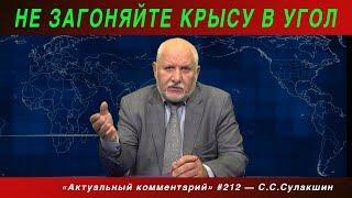 АК #212 «Не загоняйте крысу в угол» Степан Сулакшин