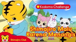 Download Video Shimajiro: A Wonderful Adventure Eps 3.2 - Ketika Ibu Menangis MP3 3GP MP4