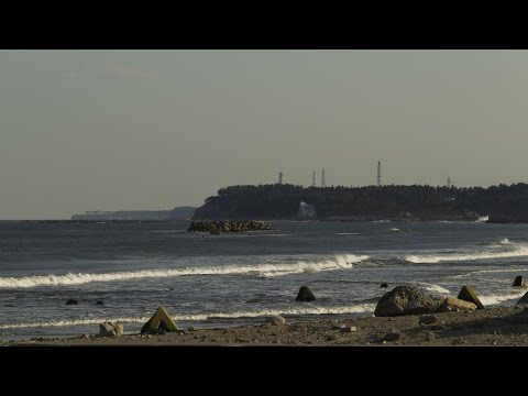 Japan under tsunami warning after earthquake