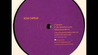 Soul capsule - Lady science (NYC sunrise)