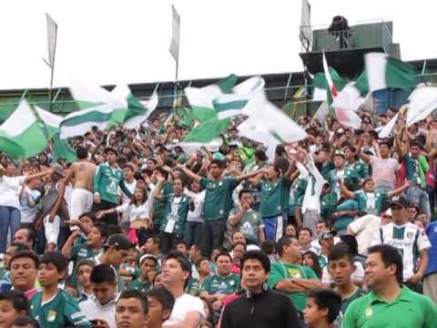 Porra de León en el estadio - Los Lokos de Arriba - León