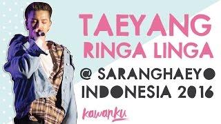 Taeyang - Ringa Linga (Full) @ Sarangahaeyo Indonesia 2016 #SHI2016.