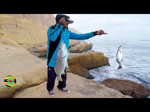 Pesca De Corvinas | Pesca