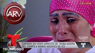 Captan arresto de trabajadora del campo por ICE | Al Rojo Vivo