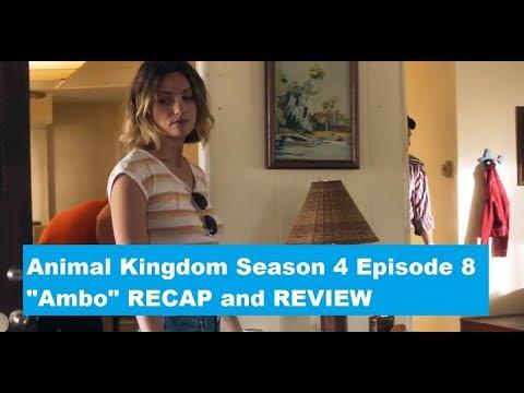 Animal Kingdom Season 4 Episode 8 RECAP/REVIEW:  Ambo