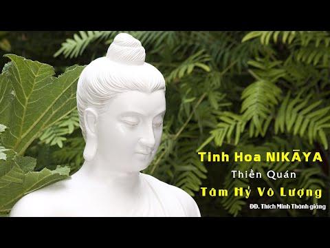 Tinh Hoa NIKAYA – Thiền Quán – Tâm Hỷ Vô Lượng