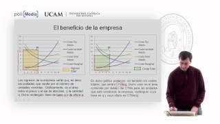 Microeconomía II - La Competencia Perfecta (5) - Alfonso Rosa