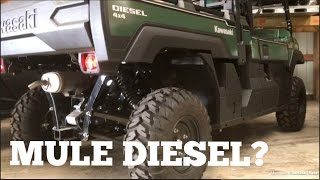 4. Kawasaki MULE PRO-DX EPS DIESEL! || Should We Buy it?