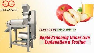 Apple juice processing plant juice making machine high juice yield youtube video