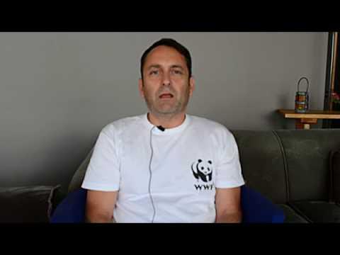 Το WWF Ελλάς στην πρώτη εναέρια καταγραφή κητωδών στην Ελλάδα