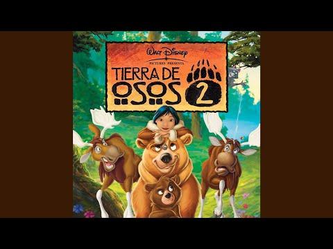 Video Tierra De Osos 2 - Bienvenido Hoy (Reprise) download in MP3, 3GP, MP4, WEBM, AVI, FLV January 2017