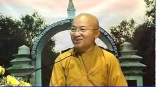 Kinh Bách Dụ 04 (Bài 14-18): Do hiểu sai nhân quả - Thích Nhật Từ