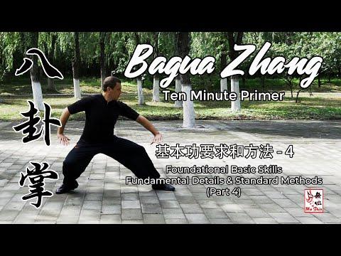 Bagua Zhang Ten Minute Primer - Foundational Basic Skills (Part 4)