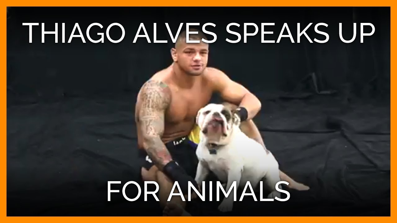 Thiago Alves Speaks Up for Animals