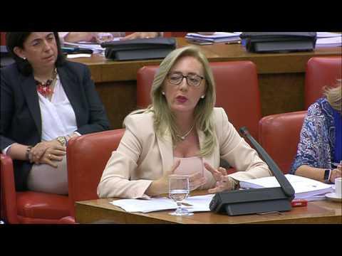 Dueñas defiende el informe para la creación del Pacto de Estado en materia de Violencia de Género