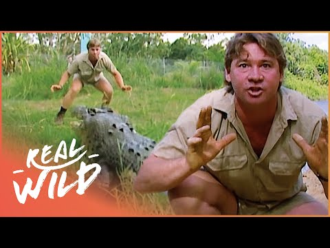 Crocs Down Under -Steve Irwin Documentary (1998)