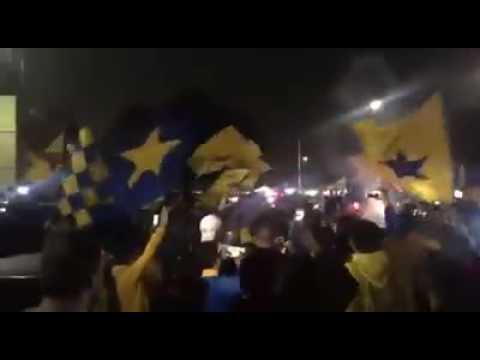 Festejo de libres y lokos  pase a la final | Semifinal Tigres vs León 2016 - Libres y Lokos - Tigres