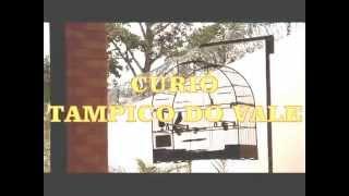 Curio Tampico do Vale I lugar Preto com Repetiçao