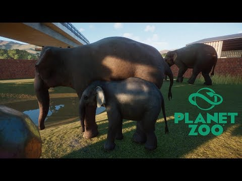 Planet Zoo (PC)(English) #11 (BETA) 8 Minutes of Indian Elephant