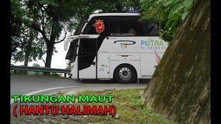 Video Hunting Bus Di Tikungan (Hantu Halimah) Yang Telah Bnayak Makan Korban Jiwa MP3, 3GP, MP4, WEBM, AVI, FLV Januari 2019